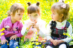 Children playing on meadow Royalty Free Stock Images