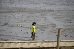 Children playing mud on the sea royalty free stock image