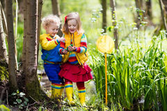 Children playing outdoors catching frog. Children playing outdoors. Preschool kids catching frog with net. Boy and girl fishing in forest river. Adventure Stock Images