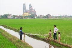 Children are playing in the paddy field in the countryside of the North of Vietnam Stock Photos