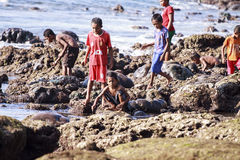 Children playing on the rocks Royalty Free Stock Photo