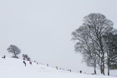 Children playing in the snow. Sledging downhill Stock Images
