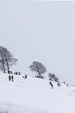 Children playing in the snow. Sledging downhill Stock Photos
