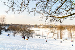 Children Playing With Snow After Snowfall On Winter Day In Tineretului Park Of Bucharest. BUCHAREST, ROMANIA - JANUARY 11, 2017: Children Playing With Snow After Royalty Free Stock Image