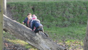 Children playing on tree trunk stock video
