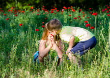 Children and poppies Royalty Free Stock Image