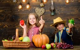 Children presenting farm harvest wooden background. Farm market. Kids farmers girl boy vegetables harvest. Farming. Teaches kids where their food comes from royalty free stock photography