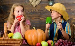 Children presenting farm harvest wooden background. Farm market. Farming teaches kids where their food comes from. Kids. Farmers girl boy vegetables harvest royalty free stock photography