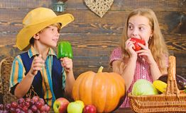 Children presenting farm harvest wooden background. Farm market. Farming teaches kids where their food comes from. Kids stock images
