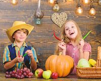 Children presenting farm harvest wooden background. Reasons why every child should experience farming. Farm market. Siblings having fun. Kids farmers girl boy stock photos