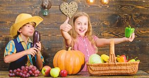 Children presenting farm harvest wooden background. Siblings having fun. Farm market. Farming teaches kids where their. Food comes from. Kids farmers girl boy stock photos