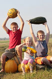 Children with pumpkin Stock Photography