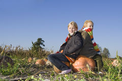 Children on pumpkin field Stock Photo
