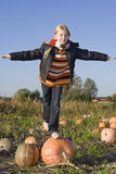 Children on pumpkin field Royalty Free Stock Photos