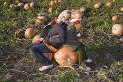 Children on pumpkin field Stock Images