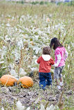 Children in a Pumpkin patch Stock Photography