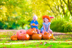 Children at pumpkin patch. Happy children at pumpkin patch during Halloween, little girl in a blue dress, boots and cowboy hat and baby boy having fun together Royalty Free Stock Images