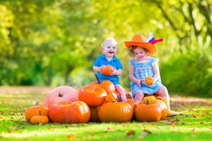Children at pumpkin patch Stock Image