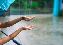 Children putting hands in the rain catching drops of rain stock image