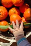 Children ręki zasięg dla mandarynki Zdjęcia Stock