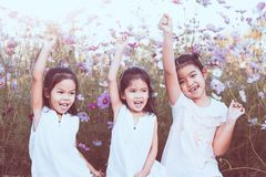 Children raise hands and playing together in the cosmos flower Stock Photography