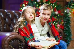 Children reading an interest book sitting on the bed against the. Decorated Christmas tree Stock Photos