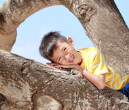 Children relaxing on a tree Stock Images