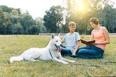 Children are resting in the park on green lawn with a white dog Husky, reading book, talking royalty free stock image