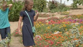 Children return to school. beginning of new school year after summer holidays. Boys and girl with school bags play among flowers near school building stock video