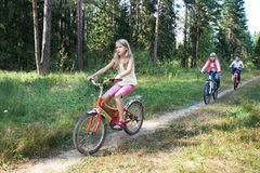 Children riding bikes in woods. On sunny summer day Royalty Free Stock Images