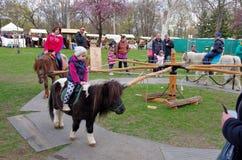 Children riding ponies Stock Image