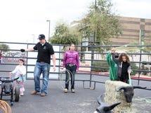 Children rope at Queen Creek Block Party, Queen Creek, Arizona. QUEEN CREEK, ARIZONA/USA - FEBRUARY 28: Children practice roping at the Queen Creek Block Party stock photos