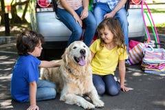 Free Children Ruffling The Dogs Fur Stock Photography - 67756182