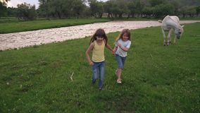 Children run through the meadow and hold hands. Two little girls have fun and carefree smile. slow motion. Children run across the field. two little girls stock video