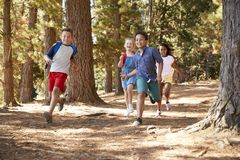 Children Running Along Forest Trail On Hiking Adventure stock photography