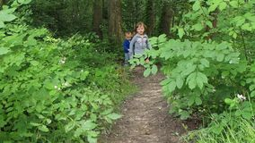 Children running in forest stock video