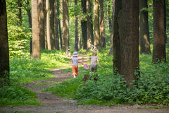 Children running in forest Royalty Free Stock Image