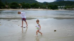 The children runs gleefully along the beach, creating a spray of water stock video footage