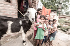 Children in rural village in India. Children in a poor rural village in India. Illiteracy is high amongst the dalits, the lowest caste in India and education is Royalty Free Stock Photo