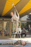 Children's acrobatic duo Stock Image