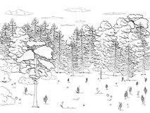 Children s coloring, black lines, white background, forest, glade, lots of trees, set. A lot of green, nature. Vector. Childrens coloring, black lines, white Stock Image