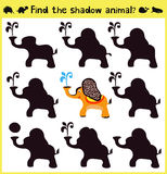 Children's developing game to find an appropriate shadow animal funny baby elephant. Vector. Illustration Royalty Free Stock Image