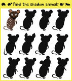 Children's developing game to find an appropriate shadow animal funny baby mouse. Vector. Illustration Stock Photos