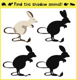 Children's developing game to find an appropriate shadow animal-jerboa. Vector Stock Photos