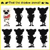Children's developing game to find an appropriate shadow animal lemur. Vector. Illustration Stock Images