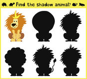 Children's developing game to find an appropriate shadow animal of the lion. Vector. Illustration Stock Images
