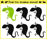 Children's developing game to find an appropriate shadow animal lizards. Vector. Illustration Stock Photography