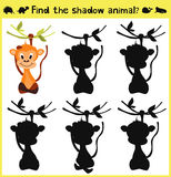 Children's developing game to find an appropriate shadow animal of the monkey. Vector. Illustration Stock Images