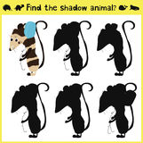 Children's developing game to find an appropriate shadow animal of the opossum. Vector. Illustration Royalty Free Stock Images