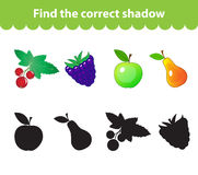 Children's educational game, find correct shadow silhouette. Fruit set the game to find the right shade. Vector illustration.  Royalty Free Stock Photos